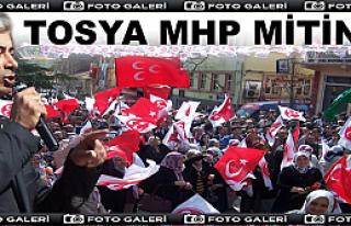 Tosya MHP Mitinginde Gövde Gösterisi