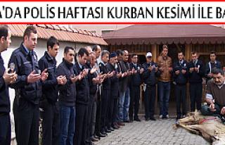 TOSYA'DA POLİS TEŞKİLATI KUTLAMALARI KURBAN KESİMİ...