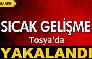 TOSYA'DA YAKALANDI