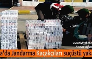 TOSYA JANDARMADAN KAÇAK SİGARA OPERASYONU