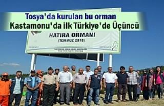 Tosya'da 15 Temmuz Demokrasi Şehitleri Hatıra...