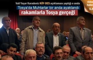 Tosya'da KÖY-DES bütçesi Muhtarların kafasını...