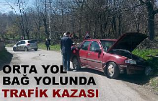 BAĞ YOLUNDA TRAFİK KAZASI