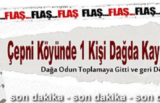 ÇEPNİ KÖYÜNDE 80 YAŞINDA YAŞLI ADAM ORMANDA...