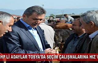 MHP Lİ ADAYLAR TOSYA'DA SEÇİM ÇALIŞMALARINA HIZ...