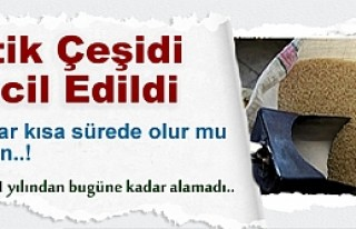 PİRİNÇ TESCİL İŞLEMİ SONUÇLANDI