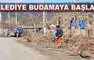 Tosya'da Bahar Hazırlıkları Başladı