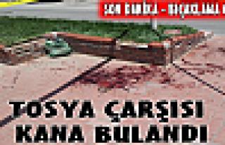 Tosya'da Bıçakla Yaralama Olayı