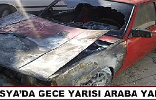 TOSYA'DA GECE YARISI ARABA YANDI