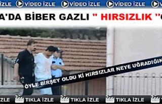 Tosya'da Hırsızlık - Hırsızlar Biber Gazı Kullandı