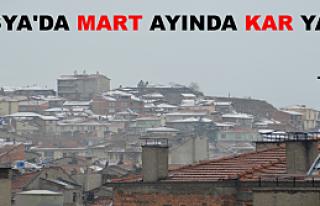 Tosya'da Mart Ayında Kar Yağdı
