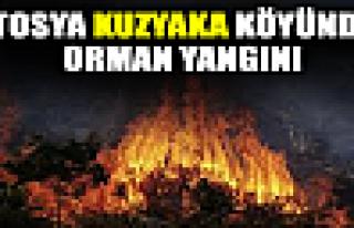 Tosya'da Kuzyaka Köyünde Yangın
