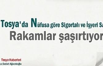 TOSYA 2017 NÜFUS RAKAMI VE  İŞYERİ VE ÇALIŞAN SAYISI