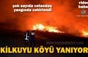 Tosya Kilkuyu Köyünde Yangında 3 Ev 6 Ahır Yandı 1 Eşek Yanarak Telef Oldu