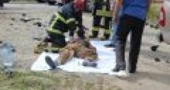 D-100 Kaza 2 Ölü 3 Yaralı