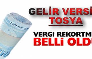 2013 VERGİLENDİRME DÖNEMİ YILLIK GELİR VERGİSİ...