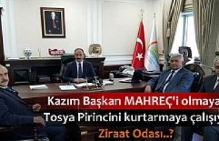 Kazım Şahin Tosya Pirinci ve Üreticisinin Sorunları...