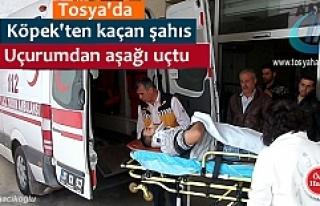 TOSYA'DA KÖPEKLERİN SALDIRDIĞI İDDİA EDİLEN...