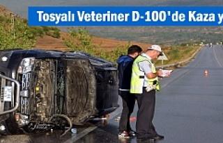 Tosya'lı Veteriner D-100 karayolunda Trafik...