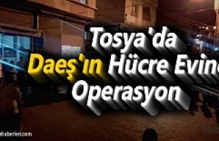 Tosya'da DEAŞ üyesi olduğu iddia edilen 5...