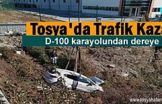 Tosya D-100 de otomobil dereye uçtu