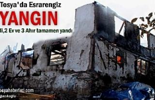 Tosya'da Yangında 2 ev ve 3 ahır Yandı