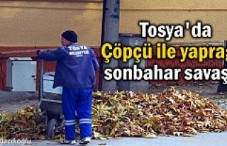 Tosya'da Çöpçüler sonbahar yaprak temizliği...