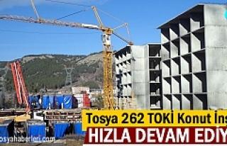 Tosya 2.Etap TOKİ Konutları inşaatı hızla ilerliyor