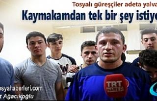 Tosya'da Güreşçiler Kaymakamdan tek bir şey...