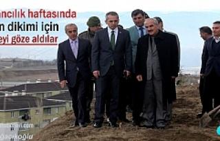 Tosya'da 21 Mart Ormancılık Haftasında Fidan...