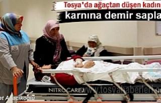 Tosya'da yüksekten düşen kadına demir saplandı