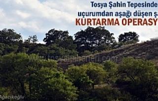 Tosya Şahin Tepesinde ilginç kurtarma operasyonu