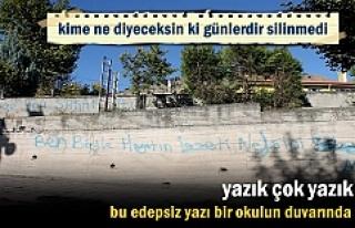 Tosya'da okulun duvarındaki edepsiz yazıya...