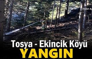 Tosya-Ekincik Köyünde Yangın