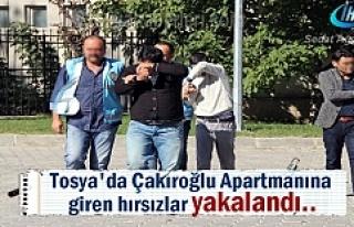 Tosya Menderes Caddesinde 3 daireyi soyan Hırsızlar...