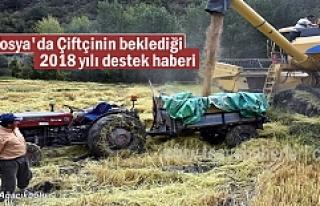 TOSYA'DA 2018 YILI DESTEKLENECEK TARIM ÜRÜNLERİ...