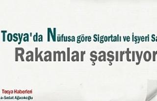 TOSYA 2017 NÜFUS RAKAMI VE İŞYERİ VE ÇALIŞAN...