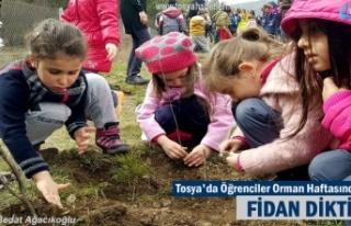 Tosya'da Öğrenciler Orman Haftasında Fidan...