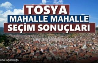 24 Haziran Milletvekilliği Seçimlerinde Tosya'da...
