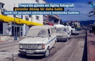 Tosya'dan Günün En İlginç Haberi ve Fotografı