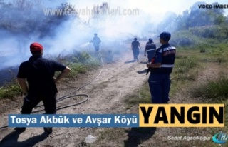 Tosya Akbük ve Avşar Köyü arasında Yangın