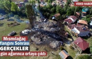 Tosya 8 Ev Yangını Sonrası Gerçekler Gün Ağarınca...