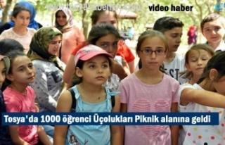 Tosya'da 1000 Yaz Kur-an Kurs Öğrencisi Piknik...