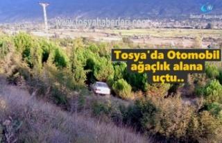 Tosya'da Ağaçlık alana uçan Otomobil içindeki...