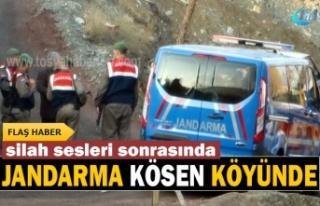 Tosya Kösen Köyünde Silah Sesleri sonrası Jandarma...