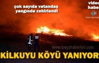 Tosya Kilkuyu Köyünde Yangında 3 Ev 6 Ahır Yandı...