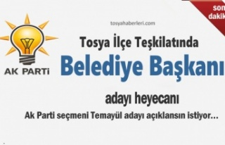 Tosya'da AK Parti Seçmeni Kimin Aday Olmasını...