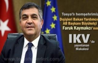 DIŞİŞLERİ BAKAN YARDIMCISI FARUK KAYMAKCI IKV...