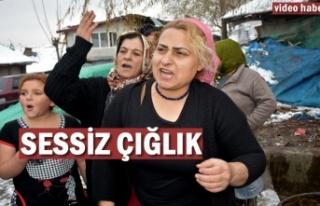 Tosya'da Sessiz Çığlık'' Yardım...