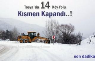 Tosya'nın Köylerinde Son Yol Durumu